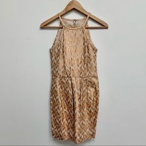 Rachel Roy Gold and Nude Cocktail Dress